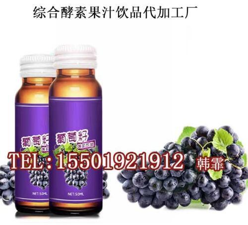 综合酵素饮料代加工厂/酵素果汁饮品oem